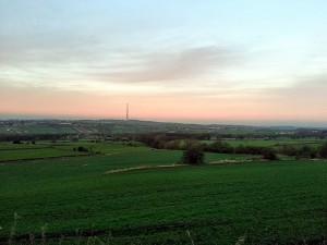 shelley landscape
